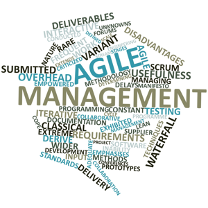 Agile and waterfall tag cloud