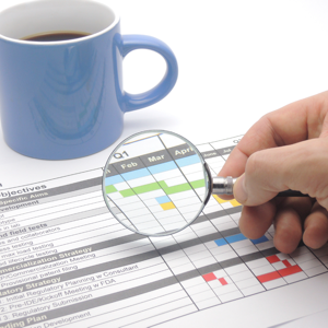Hand, magnifying glass and Gantt chart