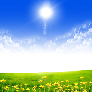Landscape with blue skies, sunshine and green grass