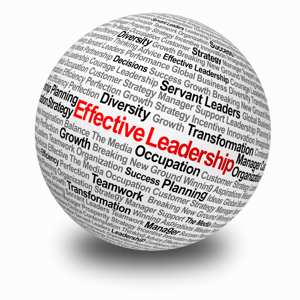 Effective leadership sphere