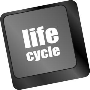 Life cycle written on digital touch screen