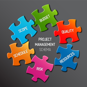 Project management schema concept