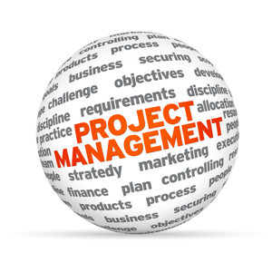 3D sphere with the word Project Management on white background
