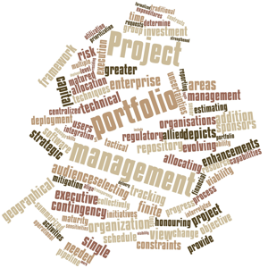 Abstract word cloud for project portfolio management with related terms