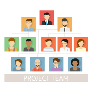 Project team organisation chart