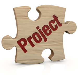 flexible project management