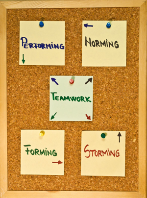 Sticky notes on a cork board showing the stages of team development