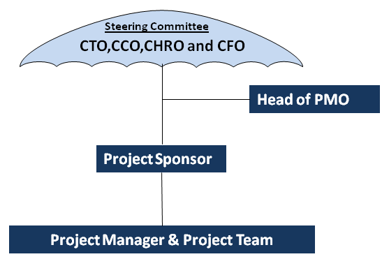 Diagram showing a traditional project steering committee